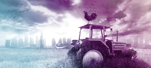 tractor and rooster