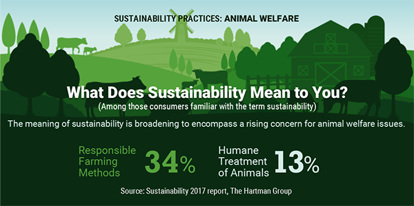 What dose sustainability mean to you