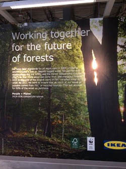 Working together for the future of forests IKEA