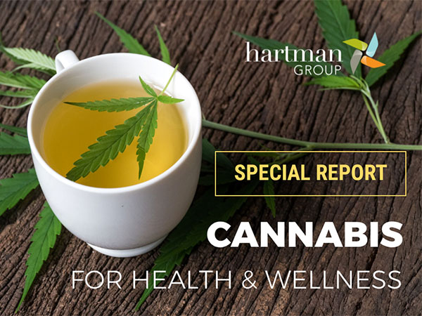 THG Cannabis for HW special report
